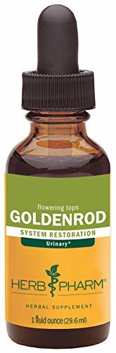 Herb Pharm Goldenrod Extract for Urinary System Support - 1 Ounce