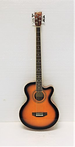 5 String Acoustic Electric Bass - 4