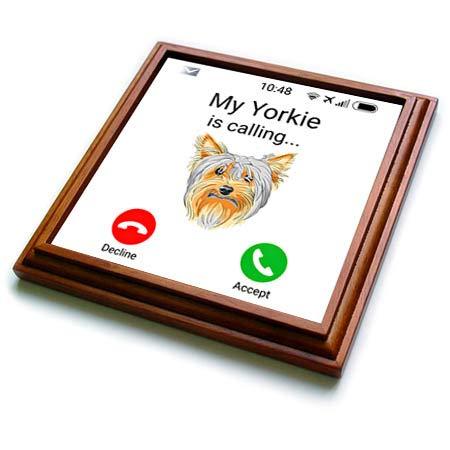 3dRose Carsten Reisinger - Illustrations - My Yorkie is calling Funny Incoming Phone Call Yorkshire Terrier - 8x8 Trivet with 6x6 ceramic tile (trv_318838_1)