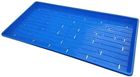 Shallow Tray Blue
