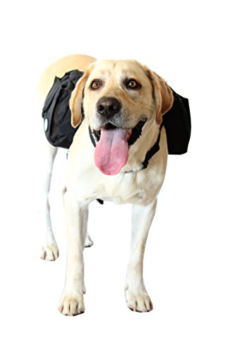 Lightweight Endurance Saddles (RIGG DOG Oxford Canvas Dog Backpack Saddle Bag Harness - Perfect Dog Hiking Pack for Treks, Camping and Hound Travel | Durable, Lightweight, Saddlebags for Medium and Large Dogs (Black))