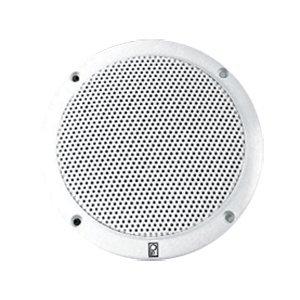 Vhf Extension Speaker (PolyPlanar 5