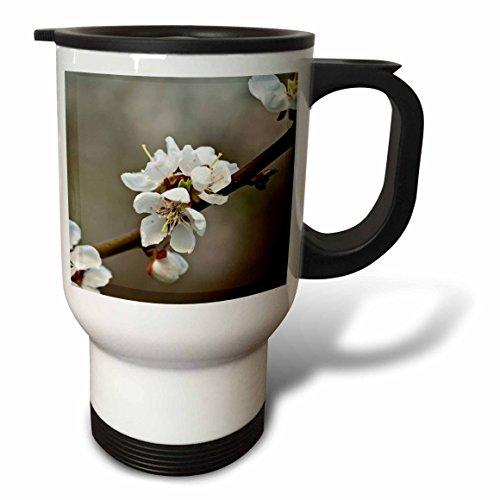 3dRose Alexis Photography - Flowers Sakura Beautiful - Three Japanese apricot flowers on a twig. Soft brown, grey backdrop - 14oz Stainless Steel Travel Mug (tm_286521_1) by 3dRose