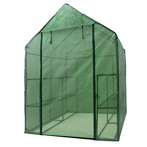 Nova Microdermabrasion Mini Walk-in Greenhouse 2 Tier 8 Shelves with PE Cover and Roll-Up Zipper Door, Waterproof Cloche Portable Greenhouse Tent-57 L x 57'' W x 77'' H, Grow Seeds & Seedlings by Nova Microdermabrasion (Image #3)