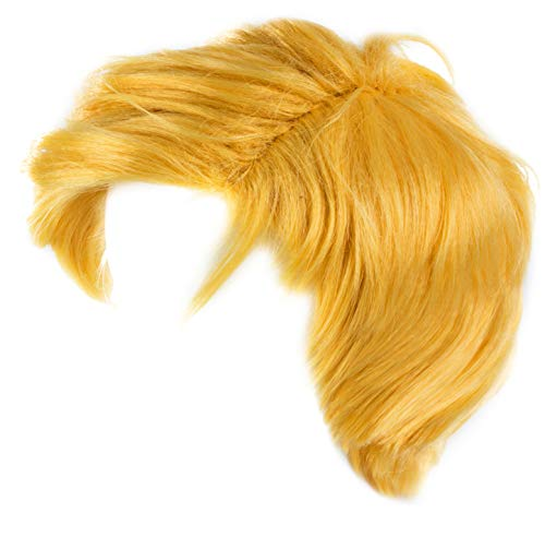 Funny Party Hats The Billionaire Wig - Mr. President Wig - Costume Wigs - Costume Accessories -