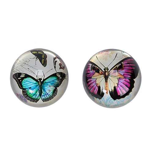 Beachcombers Butterfly Jungle Violet Paperweight product image