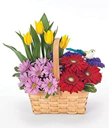 Endless Elegance Easter - Send Easter Flowers - Flower Arrangements for Easter - Same Day Easter Baskets Delivery - Easter Flower Arrangements - Easter Centerpiece & Baskets delivery Service