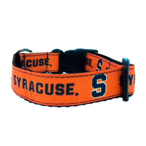 All Star Dogs NCAA Syracuse Orange Dog Collar, Team Color, Large by All Star Dogs