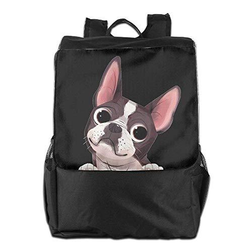 Boston Terrier Travel Bookbag School College Laptop Women Cute Backpack Men a5Afpqqd