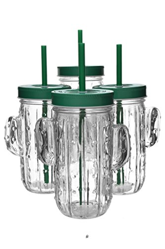 Set 4 Southwestern Tropic 14.5oz Cactus Mason Jar Glasses with Lid & Straws