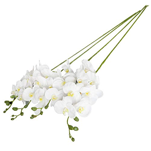 - Royal Imports Phalaenopsis Orchid Flowers Artificial Fake Silk 4 Branches for Bouquets, Weddings, Valentines, Wreaths, Crafts, White