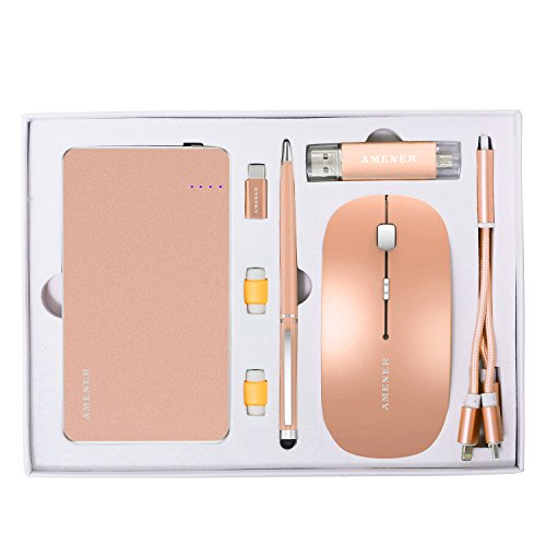 AMENER Luxury Business Gift Set- Perfect for Holiday, Birthday, Corporate- Professional Office Supplies Electronic Kit, Best Gifts for Men & Women(Gold)