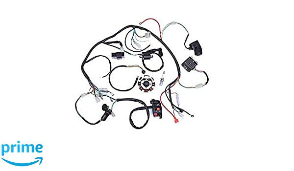Anngo Complete Wiring Harness Kit Wire Loom Electrics