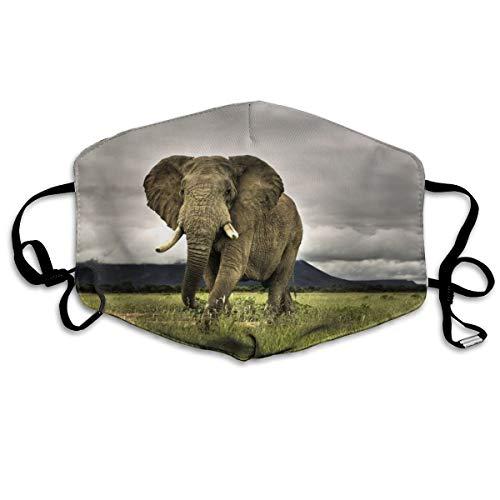 African Elephant Cartoon Anti-Dust Earloop Face Masks for