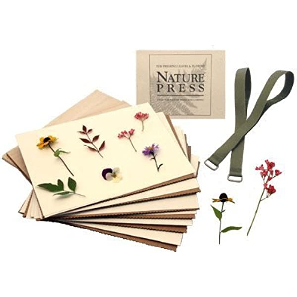 Amazon Com Natures Pressed Flower Leaf Press 7 X 9 Nature Press For Pressing Leaves Flowers Arts Crafts Sewing