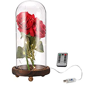 ALLOMN Rose Artificial Silk Sparkle Rose with Glass Lampshade 20-LED Strip Light Warm White Great Gift for Valentine's Day Mother's Day Christmas Birthday 30