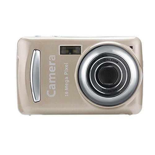 - LiPing 2.4HD Screen Digital Camera 16MP Anti-Shake Face Detection Camcorder Blank (Gold)