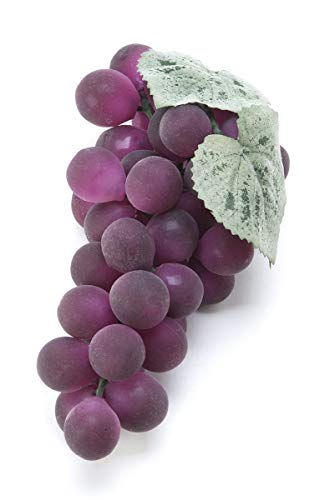 Darice CHI-9359 Everyday Fruit MATTED Round Grapes X38 Purple WBX