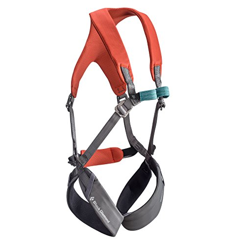 Black Diamond Momentum Full Body Harness - Kid's Octane/Slate One Size