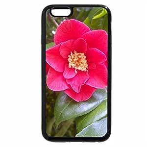 iPhone 6S Plus Case, iPhone 6 Plus Case, flower
