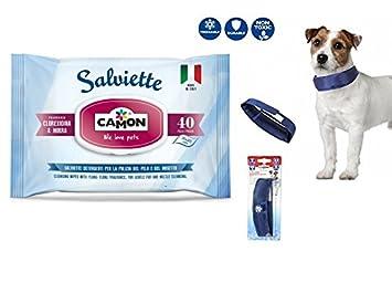 Camon Toallitas Mirra y corexidina & collar Refrescante para perros 26 ...
