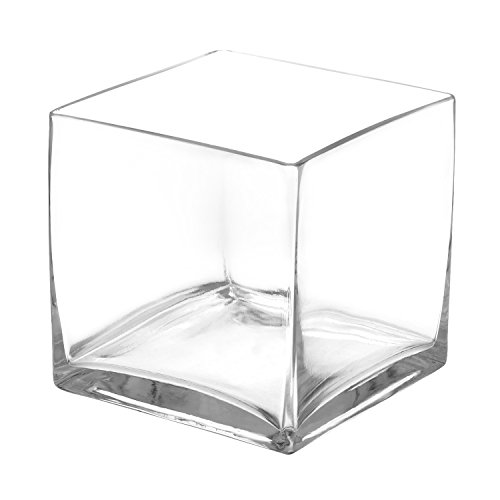 Royal Imports Flower Glass Vase Decorative Centerpiece for Home or Wedding Clear Glass, Cube Shape, 6