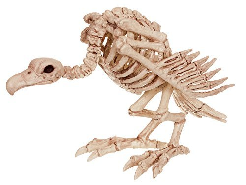 12 Gothic Halloween Horror VULTURE Bird Bones Animal Skeleton Prop Decoration by Party Showroom]()