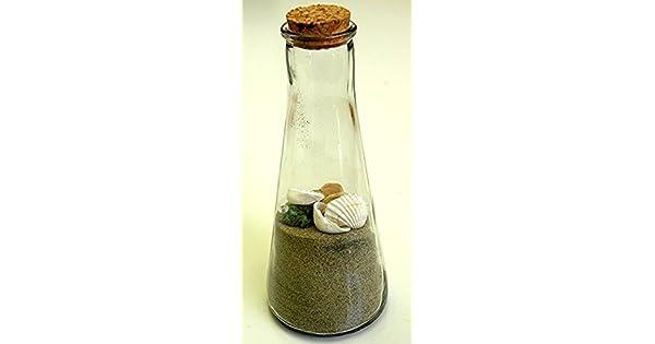 Amazon.com: Seashell Jar playa decoración – Real Seashell ...