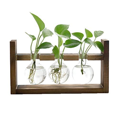 Yukuai ❥ Flower Pots Creative Hydroponic Plant Transparent Vase Wooden Frame for Home Garden Wedding Mother's Day Birthday Housewarming Parties Decor (C) (Pr Shop The Patio)
