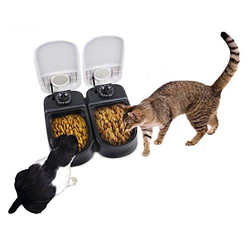 Food Dispenser Cats Timed