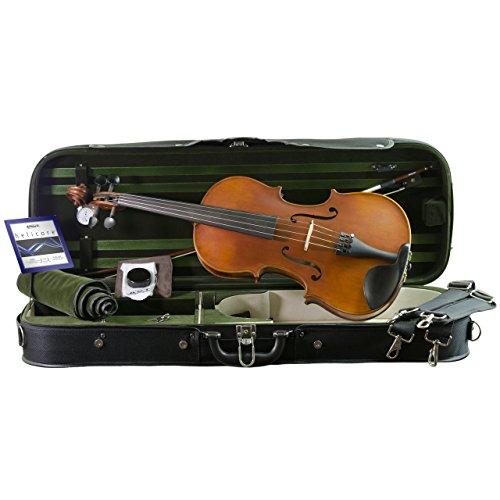 Louis Carpini Viola Outfit 15.5-inch Size (Best Viola Solo Pieces)