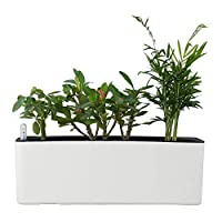 Elongated Self Watering Planter Pots Window Box