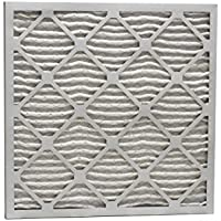Eco-Aire P25S.012323 MERV 13 Pleated Air Filter, 23 x 23 x 1