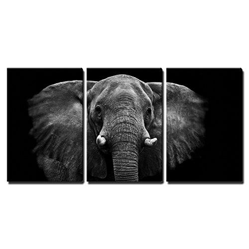 [Framed] Elephant Animals Black Modern Canvas Wall Art