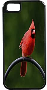 iPhone 5 Case iPhone 5S Case Cases Customized Gifts Cover Red Parrot on a branc Design - Ideal Gift