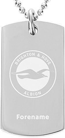 Brighton & Hove Albion Crest Pendant and Chain