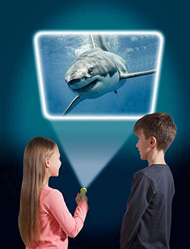 Natural History Museum Sea Creatures Torch and Projector Educational Images NEW