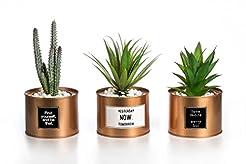 Opps Mini Artificial Plants Plastic Gree...