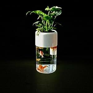 Smart acrylic aquaponics aquarium goldfish for Cleaning fish bowl