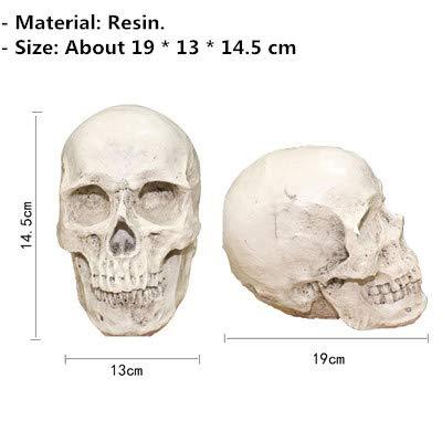 DHmart Halloween Crazy Bone Skeleton Raven 100% Plastic