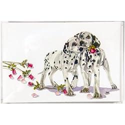 Rainbow Card Company 25-Pack Postcards - Polka Dot and Moonbeam