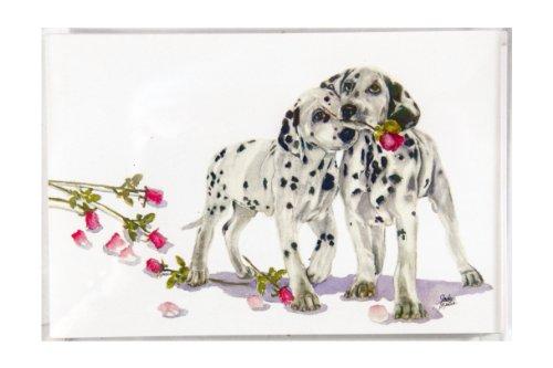 (Rainbow Card Company 25-Pack Postcards - Polka Dot and)