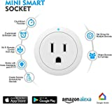 Smart Plug Amysen - A Certified Compatible with