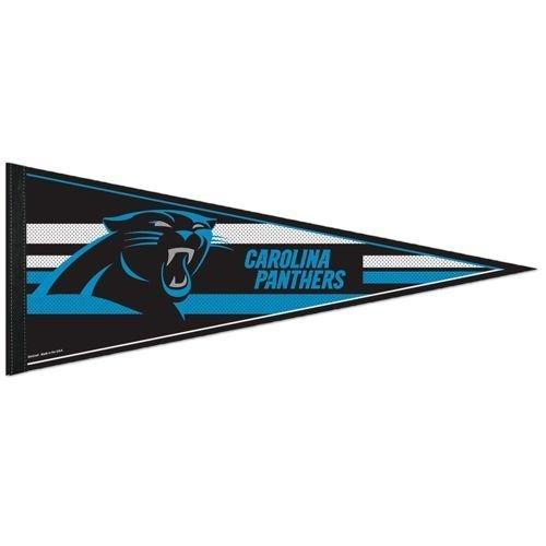 Carolina Panthers 12