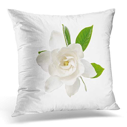 Yitlon8 Throw Pillow Covers Green Beauty White Gloria Gardenia Blossom Botany Decorative Pillow Case Home Decor Square 18W X 18L Pillowcase
