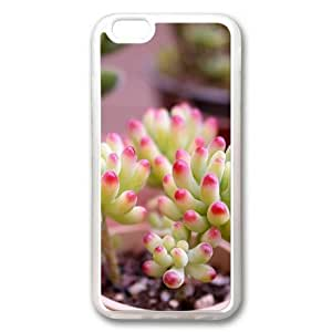 iphone 4 4s Case, Succulent Plants Custom Case for iphone 4 4s Soft TPU Material Transparent