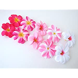 "(50) Assorted Pink Hawaiian Plumeria Frangipani Silk Flower Heads - 3"" - Artificial Flowers Head Fabric Floral Supplies Wholesale Lot for Wedding Flowers Accessories Make Bridal Hair Clips Headbands 8"
