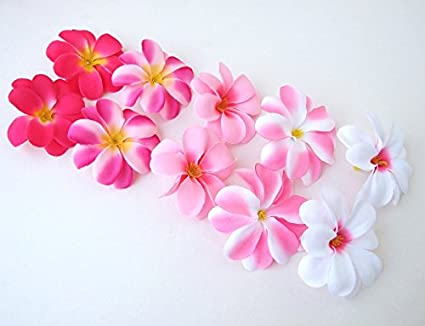 Amazon 50 assorted pink hawaiian plumeria frangipani silk 50 assorted pink hawaiian plumeria frangipani silk flower heads 3quot artificial mightylinksfo