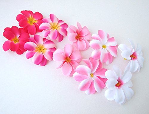 50-Assorted-Pink-Hawaiian-Plumeria-Frangipani-Silk-Flower-Heads-3-Artificial-Flowers-Head-Fabric-Floral-Supplies-Wholesale-Lot-for-Wedding-Flowers-Accessories-Make-Bridal-Hair-Clips-Headbands