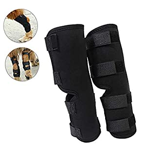 Yuqoka Dog Knee Brace for Torn Acl Hind Back Leg Dog Canine Protector Rear Leg Hock Joint Wrap Protects Compression… Click on image for further info.